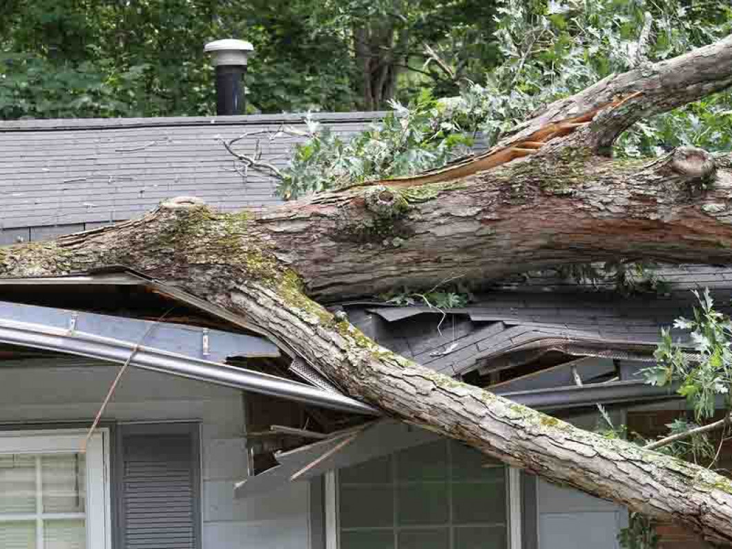 What kinds of storm damage can we repair?